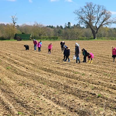 children fieldwaking in a line on a field