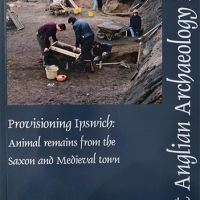 report cover with image of people excavating