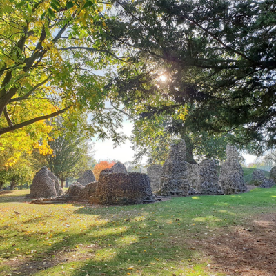 stone ruins surrounded by trees