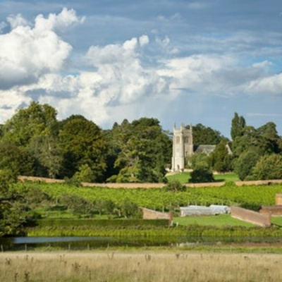 Photograph of the gardens and parkland at Ickworth House
