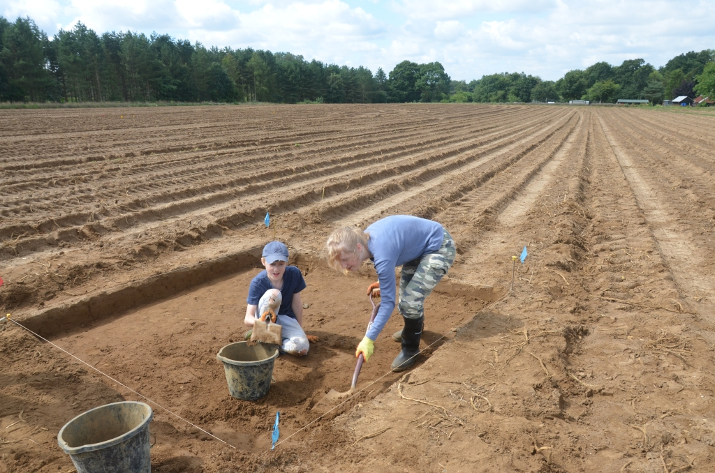 two children digging in sandy field