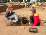 people in a field digging with trowels